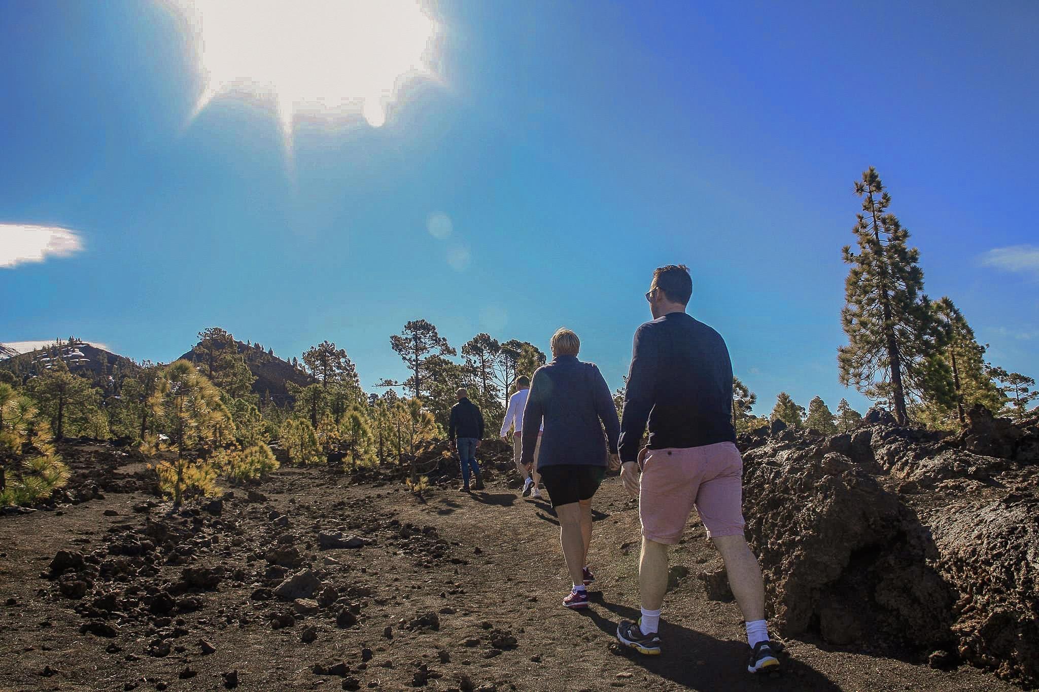 Sur de Tenerife oo